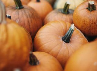 Aux sources d'Halloween : Samhain