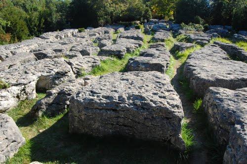labyrinthe vert - Nébias