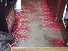 Carpet Clean Tavistock
