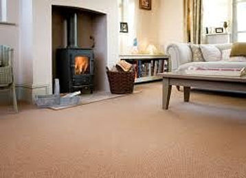 carpet cleaning Tavistock