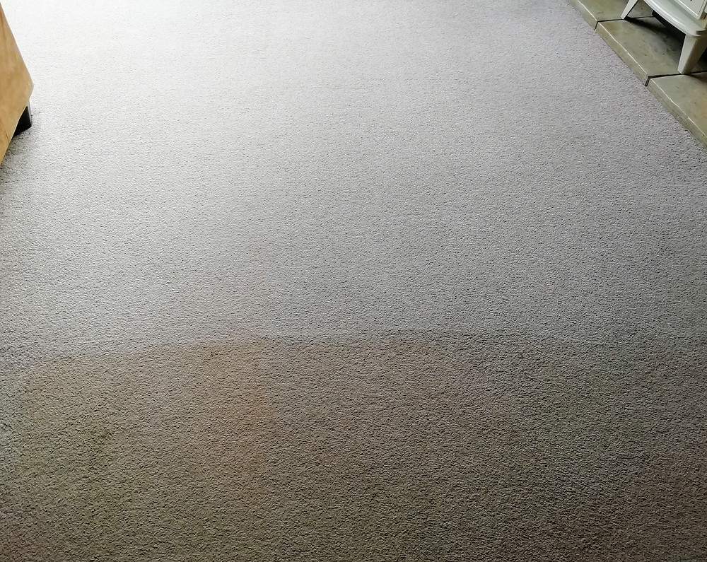 Carpet Cleaning Launceston