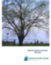 Rapport annuel-Final_1.jpg