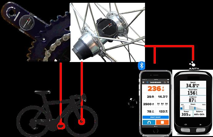 SOLO Speed & Cadence Sensor Bluetooth ANT+