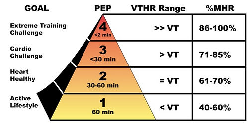 Cardiosport Cardiozone heart rate training programme