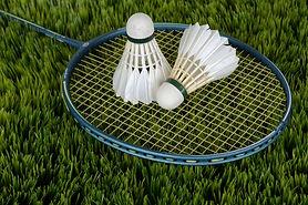 badminton_shuttle_sport_bat_racket_leisu