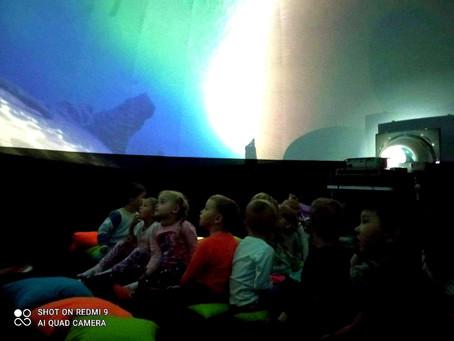 Przygoda z Oceanarium