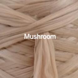 mushroom_edited_edited
