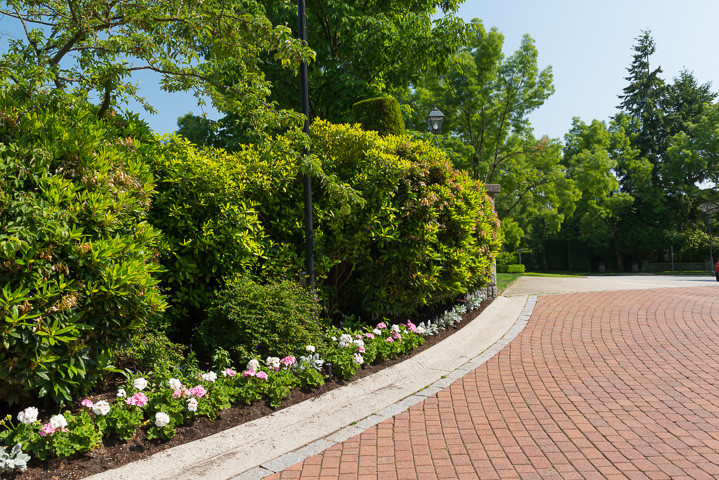 MERIDIAN LANDSCAPING-2019-Chatham-Photo