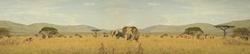 African Serengeti Wallpaper