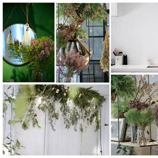 Flora & Space