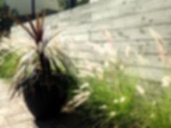 Erin Wilkerson. Little Tomato Landscapes. Clalifornia Poppy Home.