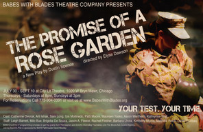 PROMISE_poster11x17.jpg