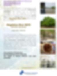 MagNUT Sense Oil brochure July 2018.jpg