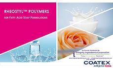 Rheostyl for Fatty Acid Soap - Presentat