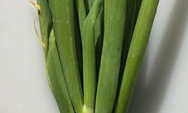 Spring onion (bunched)