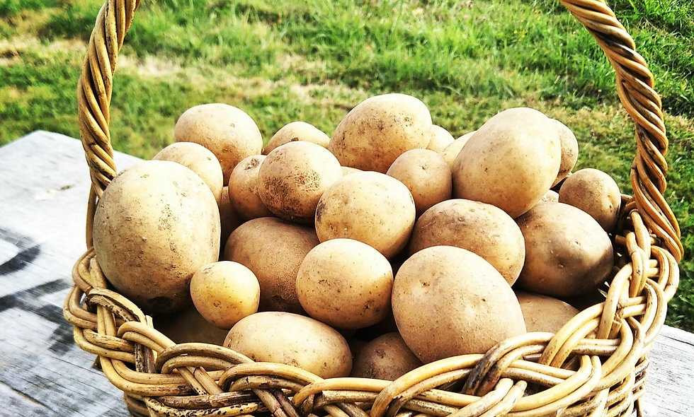 New Season Potatoes 1kg