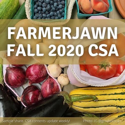 Fall 2020 CSA