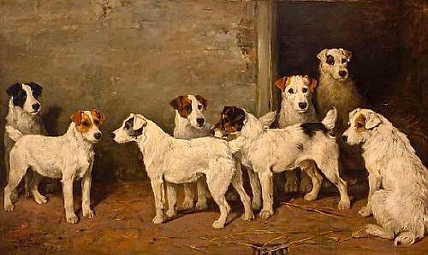 Eight Wire Fox Terriers in a Kennel by J
