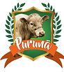 Logo_Purunã_edited.jpg
