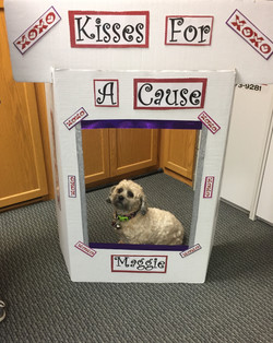Kissing Booth 2017 Walk a Mile
