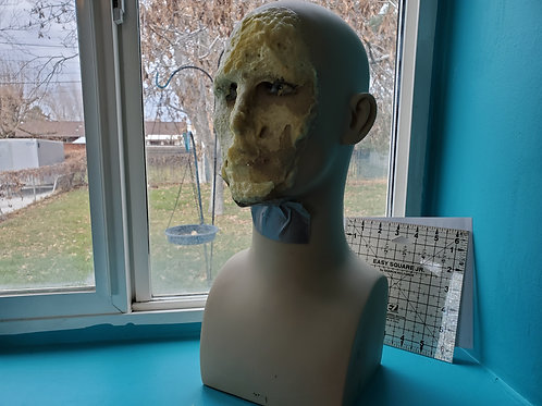 Small Mannequin Head