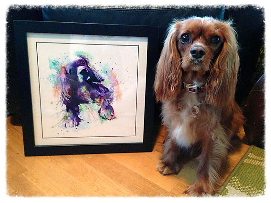 dog, pet, art, watercolor, cavalier, CKCS