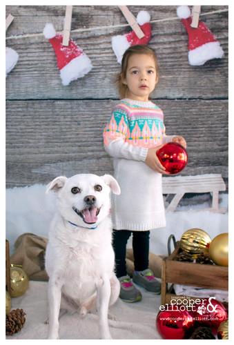 kids and pups shots