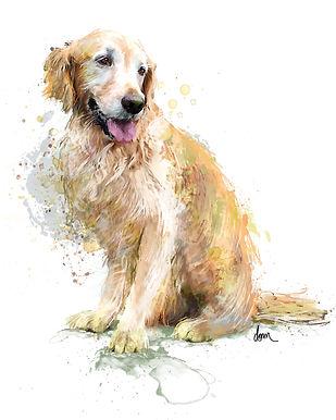 Golden Retriever, Dog, art, pets