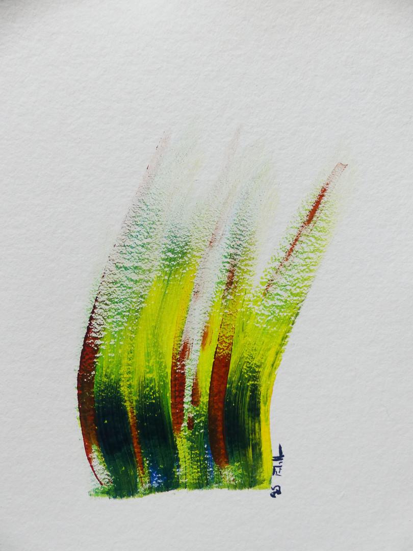 Herbes rieuses 3 - 33x25,5 cm, 2020