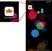 appiPhone-in04.png
