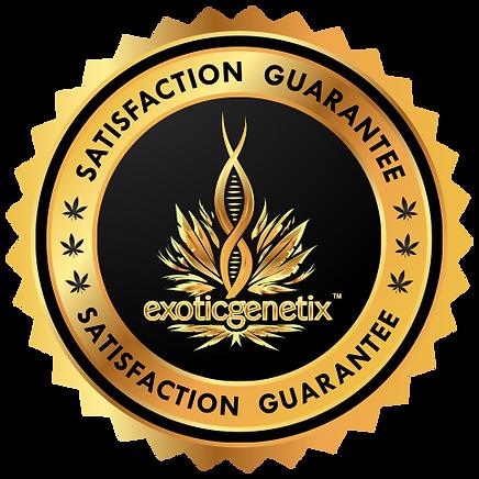 satisfaction_guarantee1.png