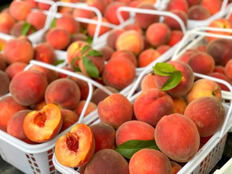 Mama Sue's Peach Cobbler