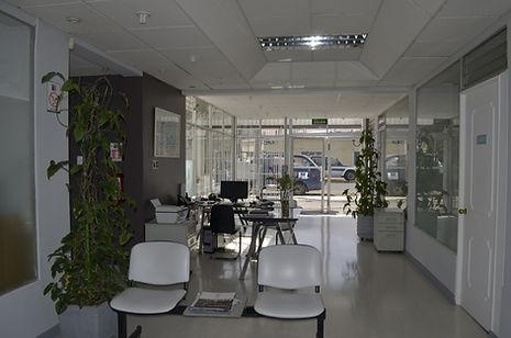 Blanqueamiento dental Iquique