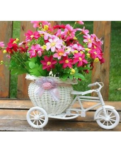Flower Tricycle Vase, Unique design pot