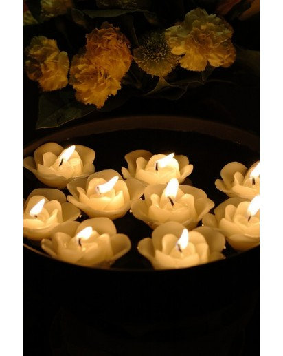 Floating Candles- Rose Bucket of 6 candles