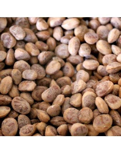 Dry Fruit, Chironji- 250gm