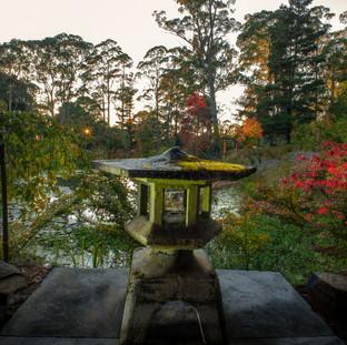 Dennarque Zen