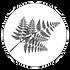 Logo (Hi-Resolution) - Dennarque-min.png
