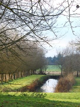 01 Canal.JPG