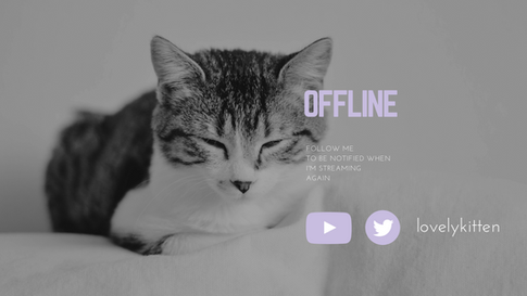Offline Twitch Cover Photo
