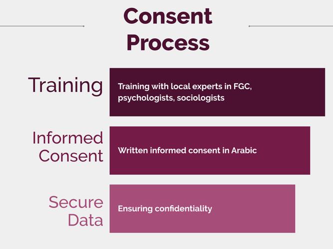 """Consent Process"" Slide"