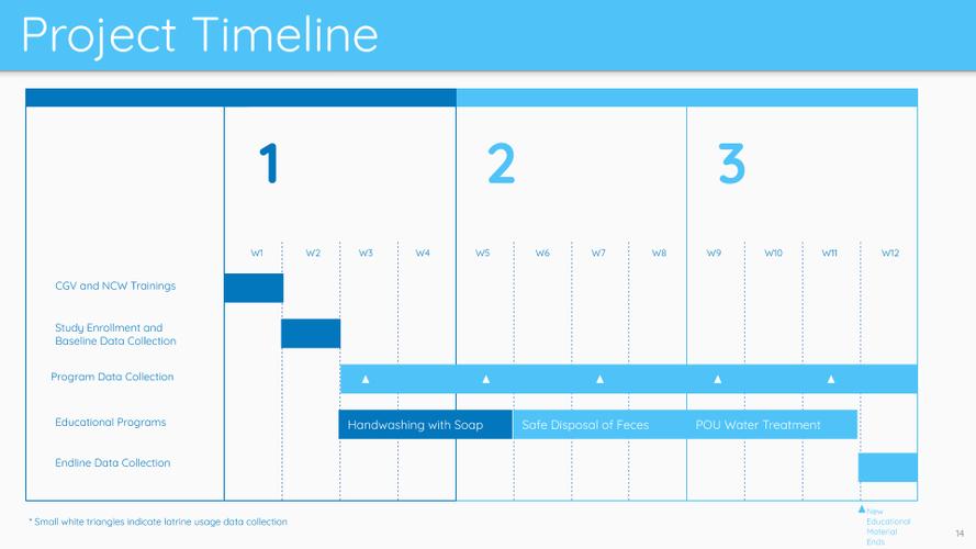 """""""Project Timeline"""" Slide"""