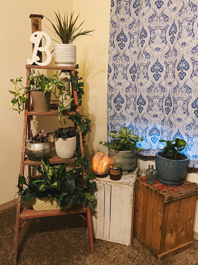 Plant Life & Vintage Thrifted Pieces