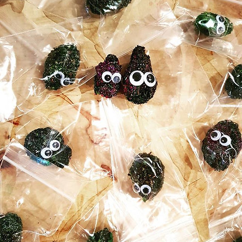 Crafty Wee Goggly Eyed Buds!