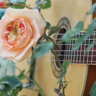 Musik_und_Rosen.jpg