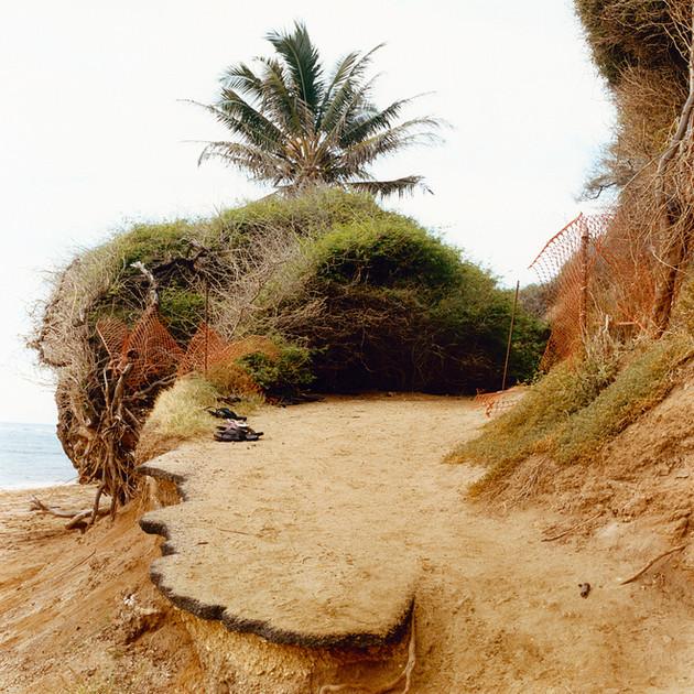 09_Ron-Hawaii 1- 20-1090-01.jpg
