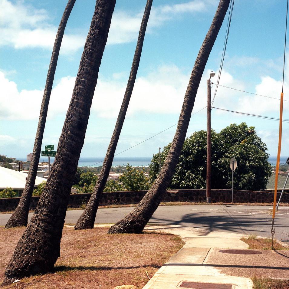 Hawaii2-15-022-005.jpg