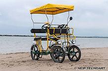 Selene rickshaw