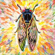 Cicada no. 21