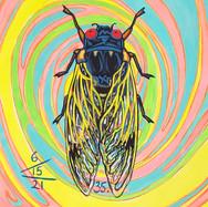 Cicada no. 35